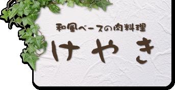 手づくりハンバーグと鉄板焼きなら埼玉県坂戸市の『けやき』